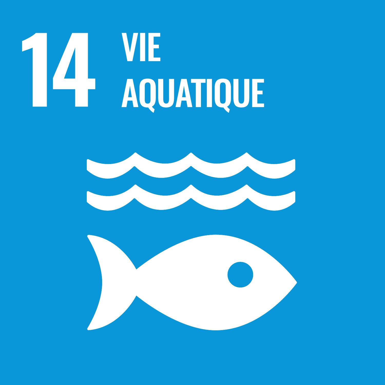Icône représentant un poisson sous l'eau